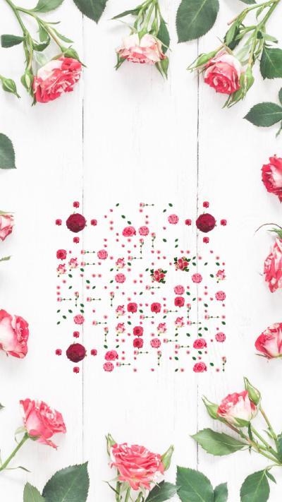 粉红玫瑰艺术二维码
