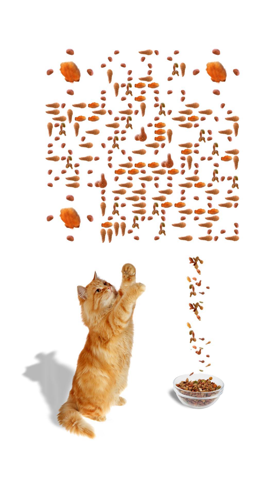 求猫粮 艺术二维码